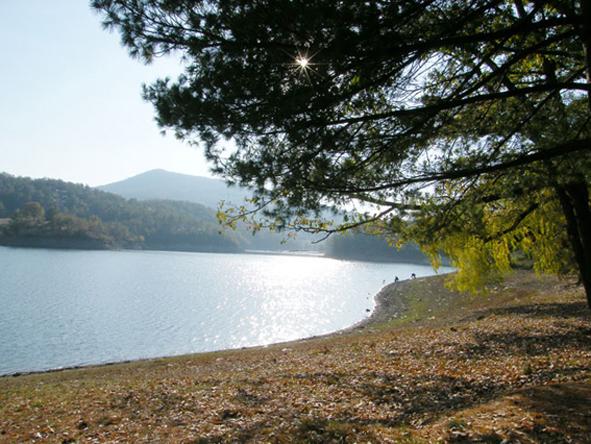 borsko-jezero-1